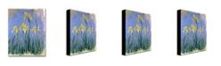 "Trademark Global Claude Monet 'The Yellow Irises, 1918-25' Canvas Art - 24"" x 18"""