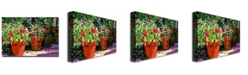 "Trademark Global David Lloyd Glover 'Beverly Hills Terra Cotta' Canvas Art - 32"" x 22"""