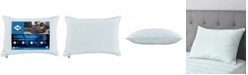 Sealy Cool to the Touch Instant Cooling Pillow, Standard/Queen