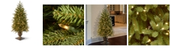 National Tree Company 4' Poly Jersey Fraser Fir Entrance Tree in Dark Bronze Plastic Pot with 100 Clear Lights-UL