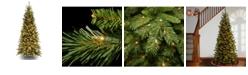 National Tree Company National Tree Tiffany Slim Fir Tree With 550 Clear Lights