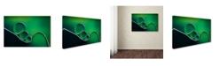 "Trademark Global Jacqueline Hammer 'Shifting Shapes' Canvas Art - 32"" x 22"" x 2"""