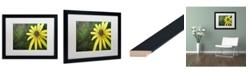 "Trademark Global Jennifer Redstreake 'Black Eyed Susan' Matted Framed Art - 16"" x 20"""