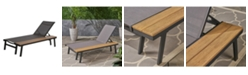 Noble House Waterloo Outdoor Chaise Set
