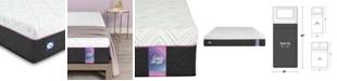 Sealy to Go 10'' Hybrid Cushion Firm Mattress, Quick Ship, Mattress in a Box- Twin XL