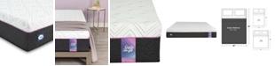 Sealy to Go 10'' Hybrid Cushion Firm Mattress, Quick Ship, Mattress in a Box- Queen