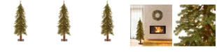 National Tree Company National Tree 4' Hickory Cedar Tree with 100 Clear Lights