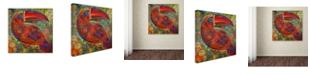 "Trademark Global Oxana Ziaka 'Toucan Deco' Canvas Art - 14"" x 14"" x 2"""