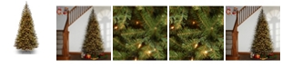 National Tree Company National Tree 6.5' Spruce Tree with 350 Clear Lights