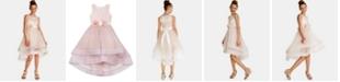 Rare Editions Big Girls Floral-Trim Dress