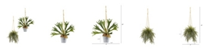 """Nearly Natural 27"""" Tillandsia Moss and Staghorn Artificial Plant in Hanging Bucket, Set of 2"""
