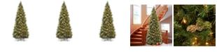 National Tree Company National Tree 10' Carolina Pine Slim Wrapped Tree with  Flocked Cones &  Clear Lights