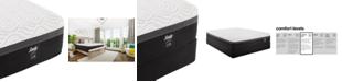 "Sealy Trust II 12"" Hybrid Cushion Firm Mattresses"