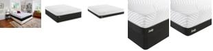 "Sealy Conform 10"" High Spirits Firm Mattress Collection"