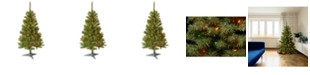 National Tree Company National Tree 4' Canadian Fir Grande  with 100 Multi Lights