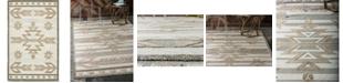 Bridgeport Home Pashio Pas2 Light Brown 5' x 8' Area Rug