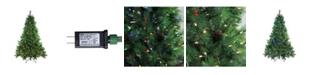 Northlight 6.5' Pre-Lit Denali Mixed Pine Artificial Christmas Tree - Dual LED Lights