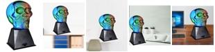 Creative Motion Plasma Skull