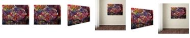 "Trademark Global Oxana Ziaka 'Magic Fish' Canvas Art - 19"" x 14"" x 2"""