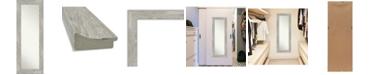 "Amanti Art Dove on The Door Full Length Mirror, 19.88"" x 53.88"""