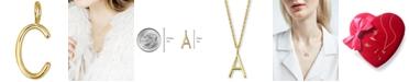 Sarah Chloe Amelia Mini Initial Charm in 14k Gold