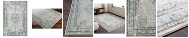 Surya Aberdine ABE-8017 White 2' x 3' Area Rug