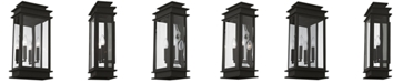 Livex Princeton 2-Light Lantern