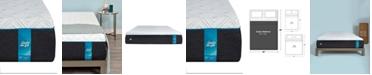 "Sealy to Go 12"" Plush Memory Foam Mattress, Quick Ship, Mattress in a Box- Queen"