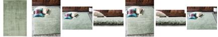 Bridgeport Home Salon Solid Shag Sss1 Sage Green 5' x 8' Area Rug