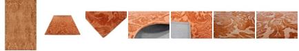 D Style Pascal Pas1 Orange 8' X 10' Area Rugs