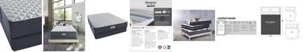 """Beautyrest Platinum Preferred Chestnut Hill 12.5"""" Extra Firm Mattress Set - Queen"""