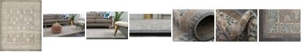 Bridgeport Home Bellmere Bel3 Gray 8' x 10' Area Rug