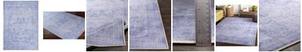 "Surya Amelie AML-2304 Lavender 5'3"" x 7'3"" Area Rug"