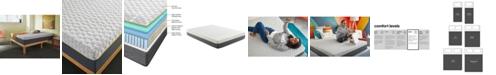 "Corsicana Early Bird 10"" Hybrid Memory Foam and Spring Medium Plush Mattress Collection"