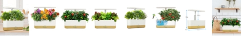 Goodful by AeroGarden Harvest Slim White with Wood Base and Gourmet Herbs Seed Pod Kit, Created for Macy's