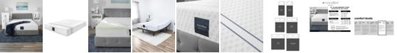 """MacyBed 10"""" Plush Memory Foam Mattress in a Box"""