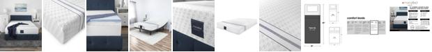 "MacyBed 12"" Plush Memory Foam Mattress , Quick Ship, Mattress in a Box - Twin XL"
