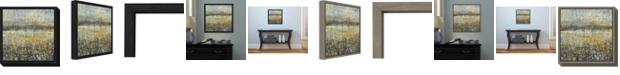 Amanti Art Rain Abstract II by Danhui Nai Canvas Framed Art