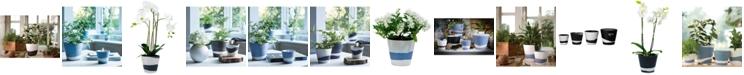 Wedgwood Burlington Pot Collection