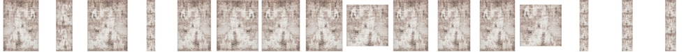 Bridgeport Home Basha Bas6 Dark Beige Area Rug Collection