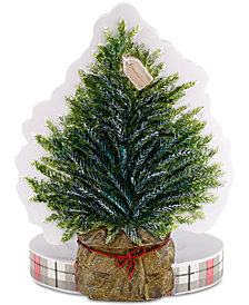 CLOSEOUT! Avanti Farmhouse Holiday Toothbrush Holder