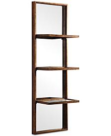 Dalis Mirrored Wall Shelf