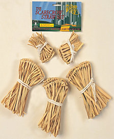 The Wizard of Oz - Scarecrow Straw Boys Accessory Kit