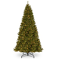 National Tree 12' North Valley Spruce Hinged Tree with 1400 Clear Lights