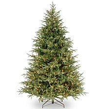 National Tree 9' Frasier Grande Tree with 1500 Clear Lights