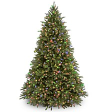 National Tree 6 .5' Feel Real Jersey Fraser Fir Tree with 800 Multi Lights