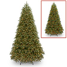National Tree 10' Feel Real Jersey Fraser Fir Medium Tree with 2000 Dual Color LED lights