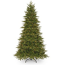 National Tree 7 .5' Feel Real Northern Fraser Hinged Tree with 800 Clear Lights