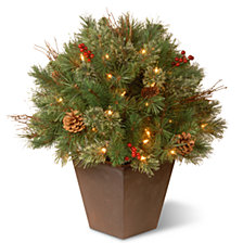 "National Tree 24"" Glistening Pine Porch Bush with Clear Lights"