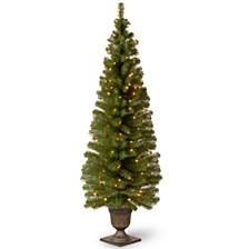 "6' Montclair Spruce Entrance Tree in 13"" Black/Gold Plastic Pot with 150 Clear Lights"